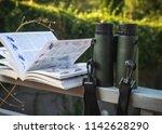 binoculars and bird guide ...   Shutterstock . vector #1142628290