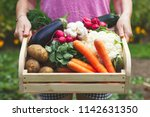 woman is holding wooden crate... | Shutterstock . vector #1142631350