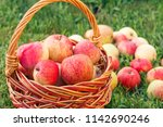 red ripe apples in a wicker... | Shutterstock . vector #1142690246