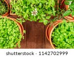 an overhead photo of pots with... | Shutterstock . vector #1142702999