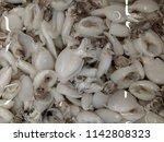 fresh frozen squid | Shutterstock . vector #1142808323