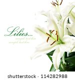 Lilies on the white with copy space - stock photo