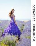 portrait of beautiful romantic... | Shutterstock . vector #114296800