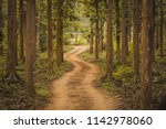 unexplored path   road less... | Shutterstock . vector #1142978060