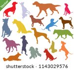 Stock vector vector set of colorful different breeds dogs silhouettes in motion sitting standing lying 1143029576