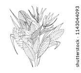 tropical flowers bouquet.... | Shutterstock .eps vector #1143044093