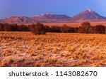 panorama atacama chile...   Shutterstock . vector #1143082670