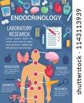 endocrinology medicine poster... | Shutterstock .eps vector #1143113939
