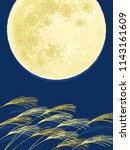 japanese silver grass and full... | Shutterstock .eps vector #1143161609