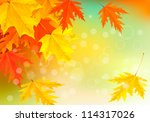 autumn background with leaves.... | Shutterstock .eps vector #114317026