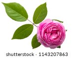 Stock photo top view various soft roses and leaves scattered on a vintage background pink rose flowers 1143207863