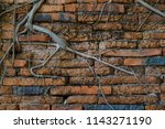a brickstone wall  entangled by ...   Shutterstock . vector #1143271190