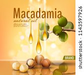 realistic 3d macadamia nut oil... | Shutterstock .eps vector #1143597926