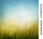 spring or summer abstract... | Shutterstock . vector #114363214
