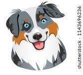 australian shepherd dog face... | Shutterstock .eps vector #1143696236