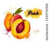 hand drawn watercolor peach | Shutterstock . vector #1143719456