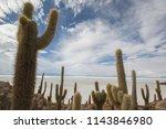 salar de uyuni is the world's... | Shutterstock . vector #1143846980