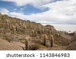 salar de uyuni is the world's... | Shutterstock . vector #1143846983