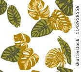 seamless hand drawn botanical... | Shutterstock .eps vector #1143928556