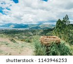 big bird cage in the hill.... | Shutterstock . vector #1143946253