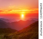majestic summer dawn image, amazing sunrise scenery, fantastic blooming rhododendron pink flowers on background  sky, colorful floral morning landscape in the mountains, Carpathians, Ukraine, Europe