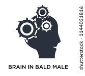 brain in bald male head icon... | Shutterstock .eps vector #1144031816
