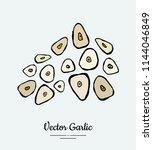 vegetable spice garlic chop....   Shutterstock .eps vector #1144046849