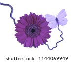 gerbera flower with butterfly | Shutterstock . vector #1144069949