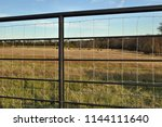 Steel Cross Fencing  Fence...