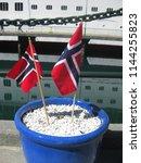 norwegian flags stuck in bright ...   Shutterstock . vector #1144255823