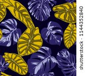 tropical jungle leaves. vector... | Shutterstock .eps vector #1144352840