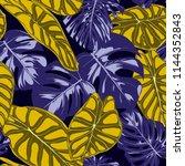tropical jungle leaves. vector... | Shutterstock .eps vector #1144352843