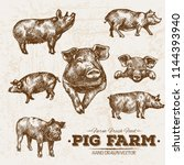 hand drawn sketch pork and pig... | Shutterstock .eps vector #1144393940