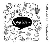 set of vegetable elements in... | Shutterstock .eps vector #1144451099