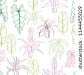 hand drawn tropical plants.... | Shutterstock .eps vector #1144455029