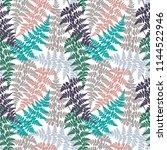 fern frond herbs  tropical... | Shutterstock .eps vector #1144522946