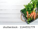 fresh carrots  parsley and dill.... | Shutterstock . vector #1144551779