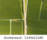 aerial of vineyard fields...   Shutterstock . vector #1144621280