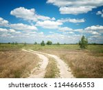 the road through the summer... | Shutterstock . vector #1144666553