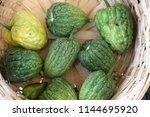 bitter melon. home grown bitter ... | Shutterstock . vector #1144695920