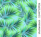 tropical palm leaves  jungle... | Shutterstock .eps vector #1144713926