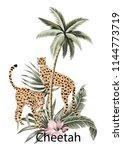 cheetah  tropical palm tree ... | Shutterstock .eps vector #1144773719