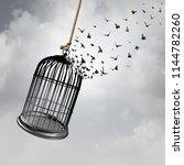 Freedom Idea With A Birdcage...