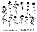 set of silhouettes of flowers... | Shutterstock .eps vector #1144803110