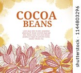 cacao beans plant  vector... | Shutterstock .eps vector #1144803296