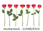 Stock photo beautiful red rose with leaves isolated on white background top view flat lay pattern 1144825313