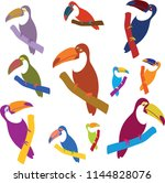 vector set of exotic colorful...   Shutterstock .eps vector #1144828076