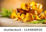 raw wild chanterelles mushrooms ... | Shutterstock . vector #1144848920