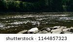 a beautiful shimmering creek  | Shutterstock . vector #1144857323
