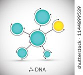 bottom structure. molecular and ... | Shutterstock .eps vector #1144899539